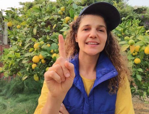 Aprende a hacer limonada – VIH y resiliencia